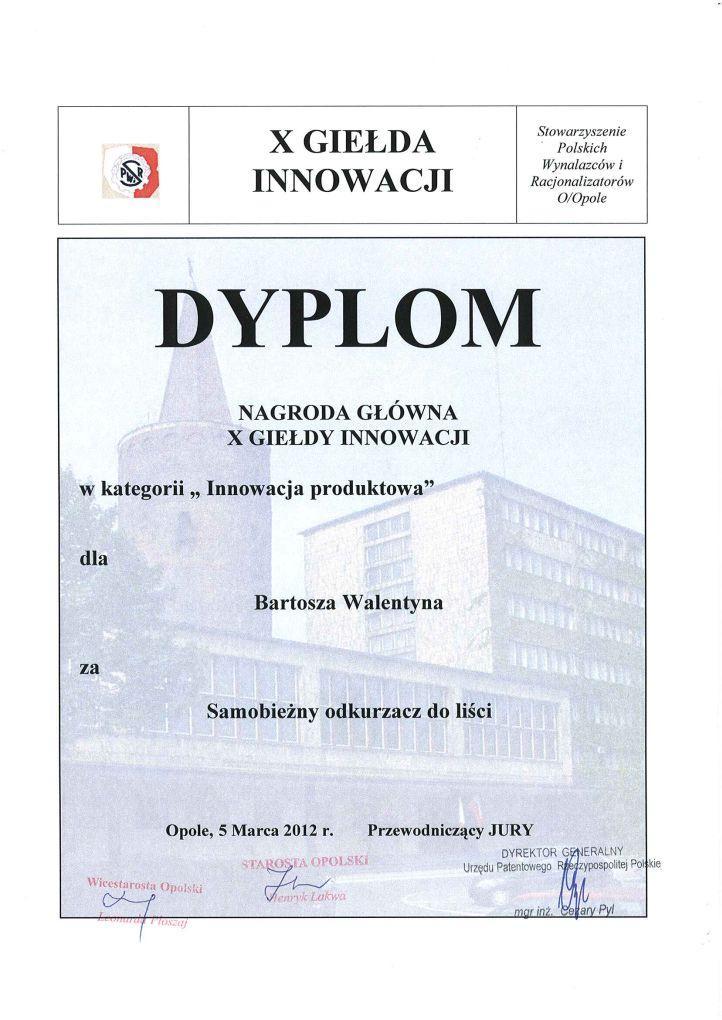 X_GI_Dyplom_BW_IP
